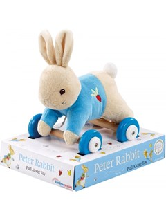 Rainbow-Designs-Peter-Rabbit-Pull-Along-Toy-2.jpg